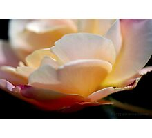 Imperfect Beauty Photographic Print