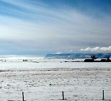 Open Plains Ranching by trueblvr