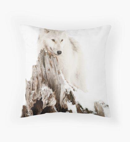 Arctic Wolf Portrait Throw Pillow
