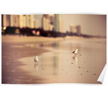 Surfers Paradise, Gold Coast Queensland Poster