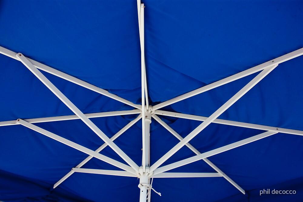 Umbrella Ribs by phil decocco