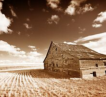 Barn by jedly80