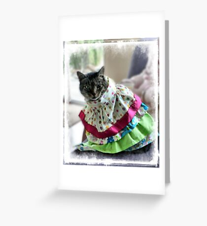 Lulu - Embarrassed! Greeting Card