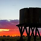 Sunset on the Downs - Inglewood Qld Australia by Beth  Wode