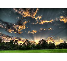 setting suns rays through the trees #1 Photographic Print