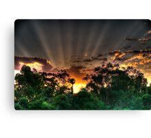 setting suns rays through the trees #2 Canvas Print
