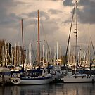 Vancouver Harbour by Rae Tucker