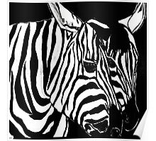 Zebra Black and White and Bold Poster