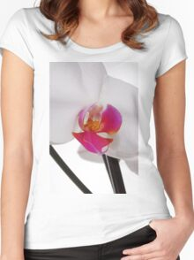 White Phaleanopsis Orchid on white background Women's Fitted Scoop T-Shirt