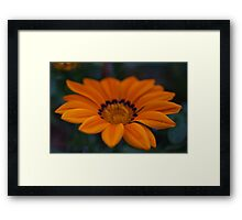 Orange and Yellow Framed Print