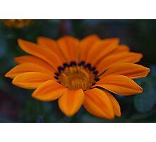 Orange and Yellow Photographic Print