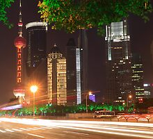 Shanghai Lujiazui Holiday Night scenery by ArtPhotographer