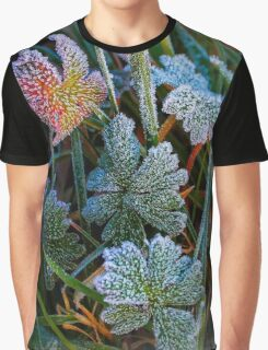 With Icing Graphic T-Shirt