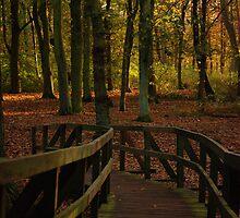 Una-bridge-d by SweetLemon