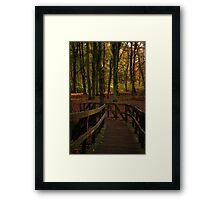Una-bridge-d Framed Print