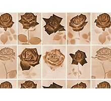 Vintage Sepia Roses Repeating Pattern Photographic Print