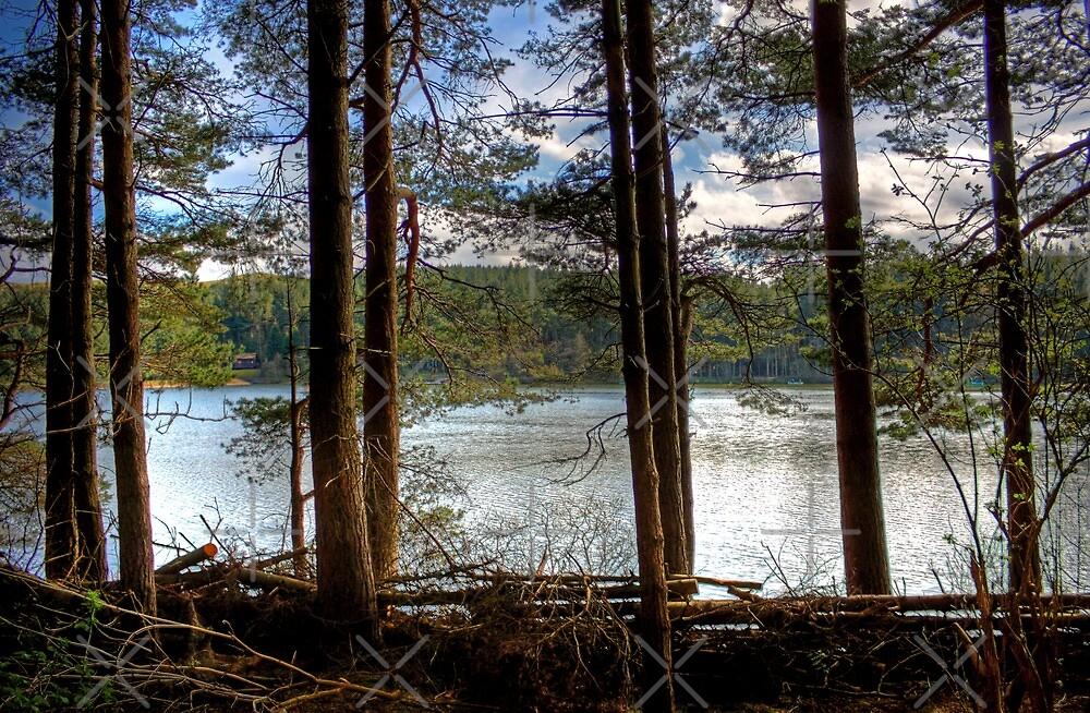 Beecraigs Loch by Tom Gomez