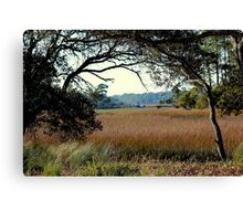 Marsh View at Kiawah Island Canvas Print