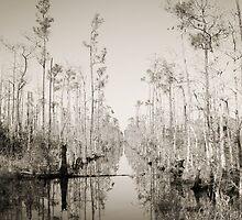 Wet Trail by Sazzyshortness