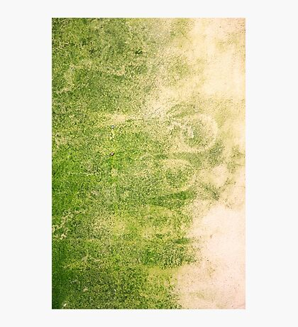 Yellow and green Abstract background  Photographic Print