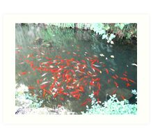red,green and white(Firenze fountain) italy Art Print