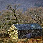 Duddon Barn by Rob Sutherland