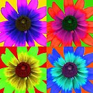 Rudbeckia Pop Art by Astrid Ewing Photography