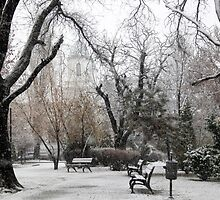 Park Benches During Heavy Snowfall In Winter In Bucharest, Romania by PhotoStock-Isra