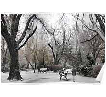 Park Benches During Heavy Snowfall In Winter In Bucharest, Romania Poster