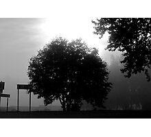 A melancholic landscape: Photo by  Brown Sugar. Views (22) tvm! Photographic Print