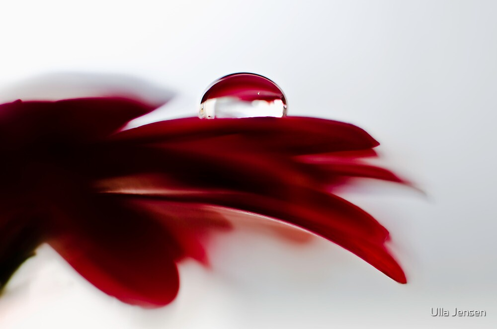 Red is the ultimate cure for sadness by Ulla Jensen