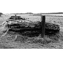 Remains of the barge Harriet with bow wave and sea of grass Photographic Print