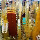 Chicago 1 by Igor Shrayer
