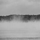 Winters Swim by Jessica Bradford