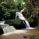 Onomea Falls by PJS15204
