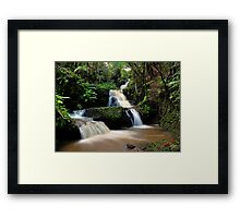 Onomea Falls Framed Print
