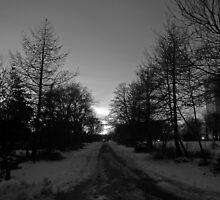 Winter no. 2 by 7thsensephoto