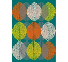 Autumn Leaves (Teal) Photographic Print
