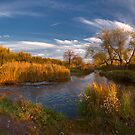 Evening of the autumn river by Dmytro Balkhovitin