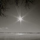 Sun Star by Jessica Bradford