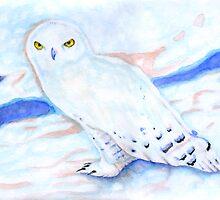 Snowy Owl by Karen Clark