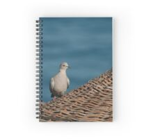Dove On A Woven Sun Parasol Spiral Notebook
