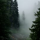 Grouse Mountain by Sheri Bawtinheimer