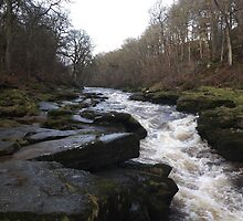 The Strid, Bolton Abbey by sarahroach0304