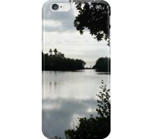 Florida in the Winter* iPhone Case/Skin