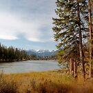 Along The Trail by Keri Harrish