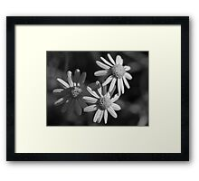 Three Faces Framed Print