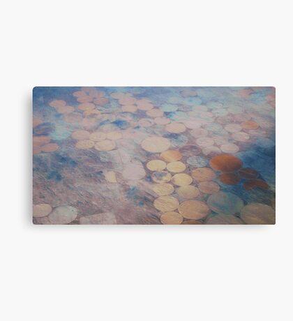 Midwest Circles Canvas Print