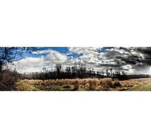 The Meadow Photographic Print