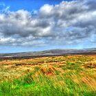 Peak District National Park  by Ferdinand Lucino